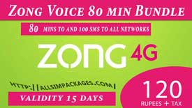zong 2 weeks offer