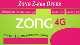Zong-Z-800-Offer-one